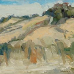 Rosy Mound Pk '08
